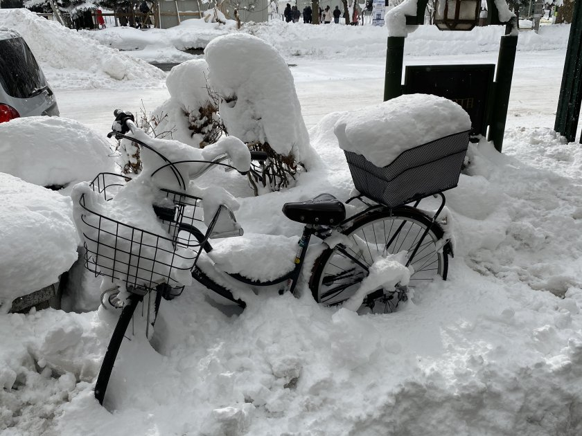 Oh dear - good luck getting home on that! (Snowed-up bike)