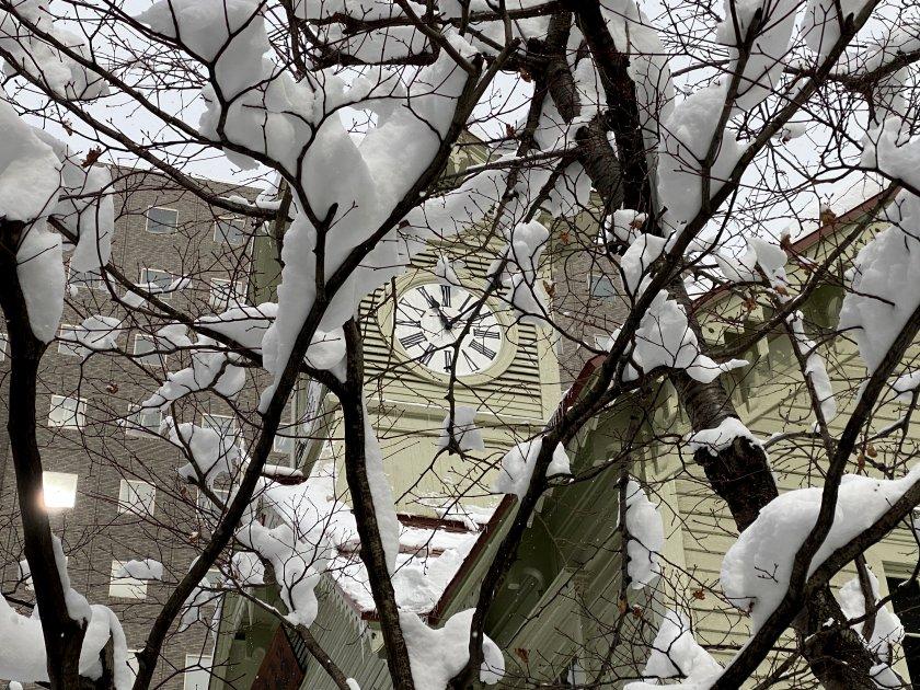 Can't resist the 'Winter Wonderland' look!