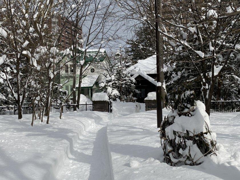 It's that Winter Wonderland look again!