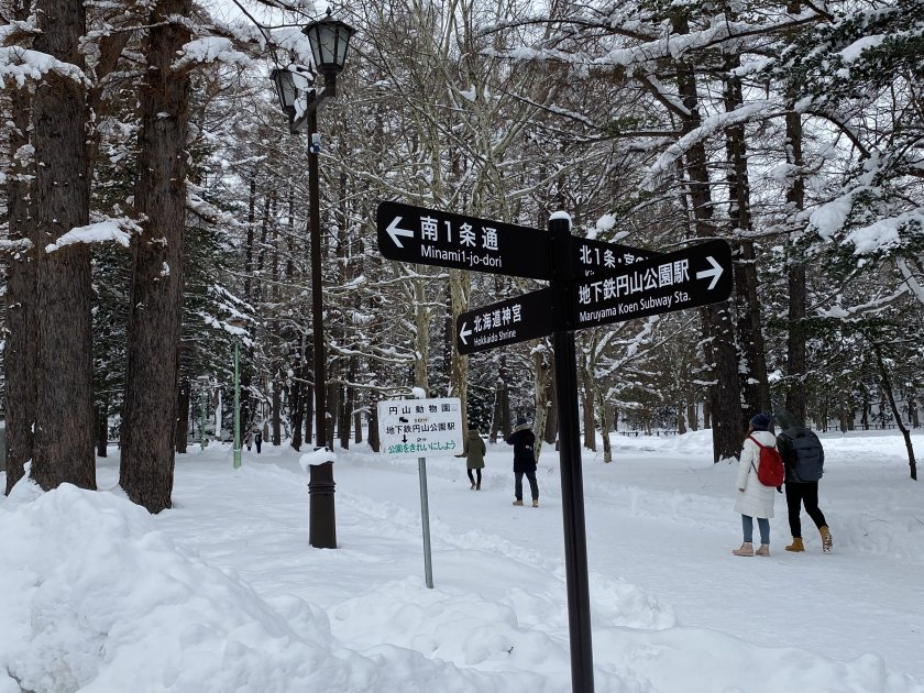 No excuse for getting lost! (signpost)