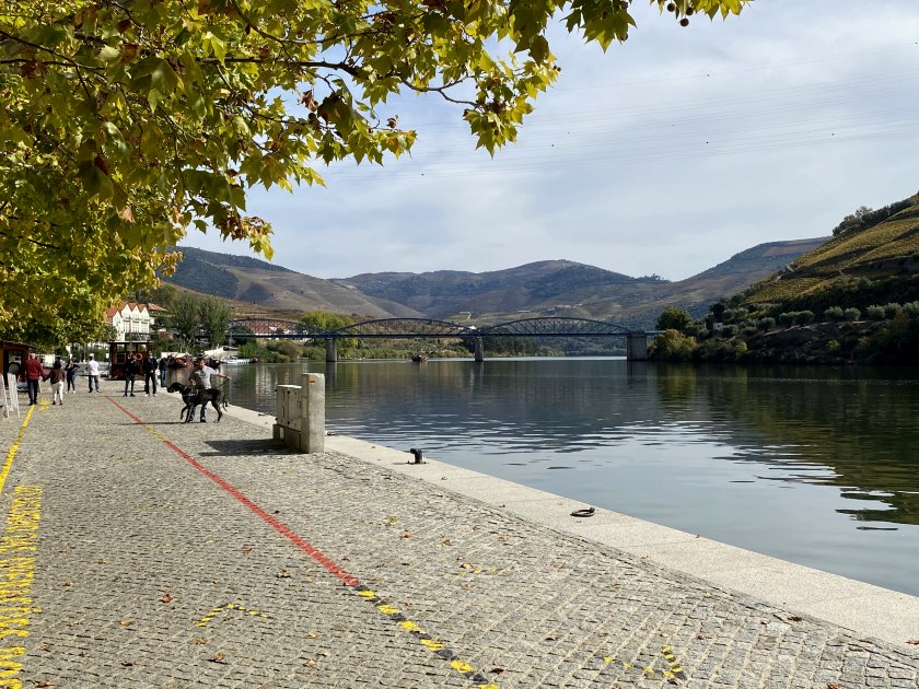 A very different-looking Douro from what we were becoming used to seeing in Gaia