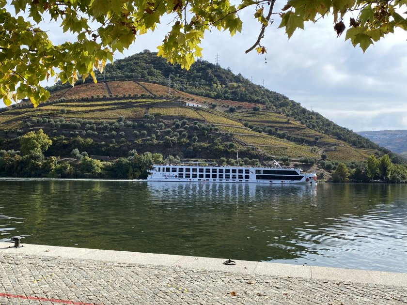 With the vineyards and the river cruiser, this made me think of Germany's Rhineland