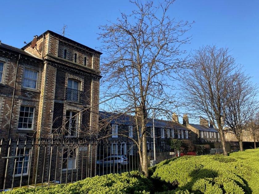 Rosebank Cottages, from Gardner's Crescent Garden