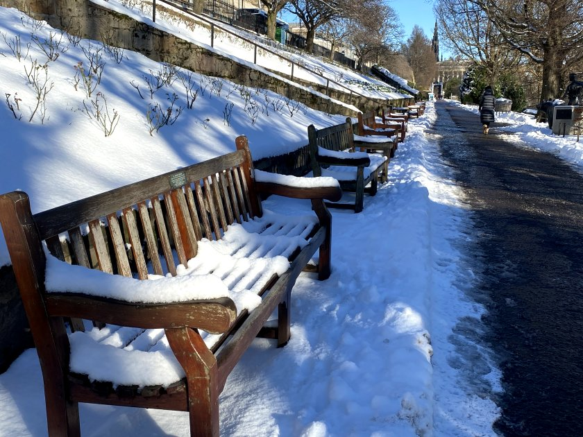 Not a great time to sit down (snow-covered benches)