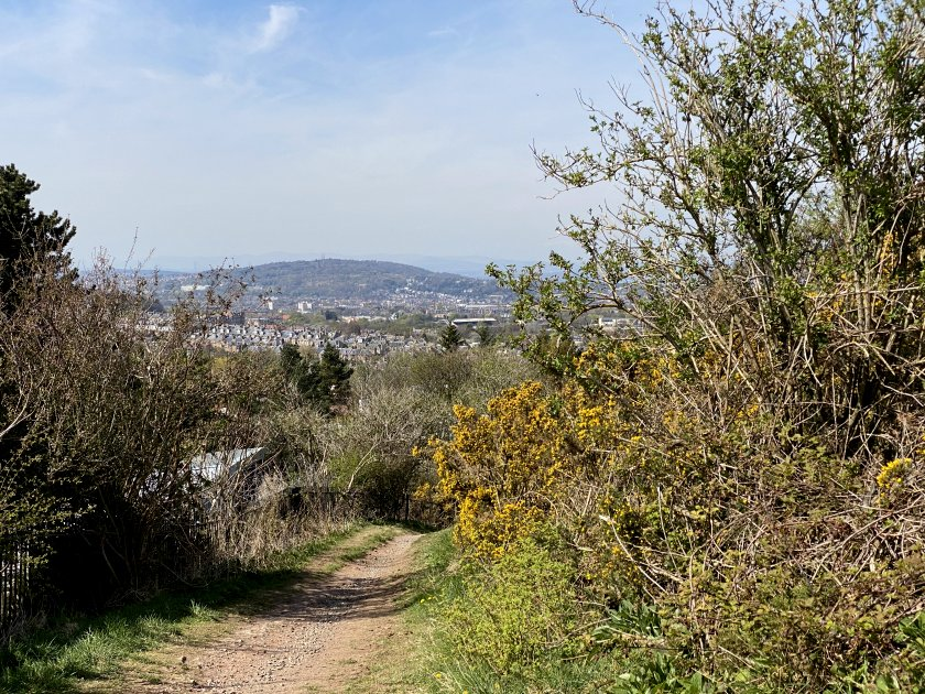 Almost immediately, the vegetation gives me a framed view of Corstorphine Hill