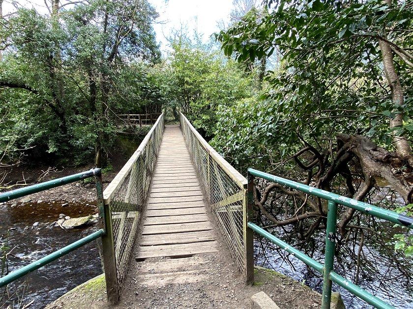 Eventually, a usable bridge