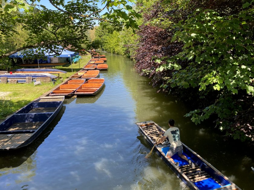 A final look - for now - at the punting activity